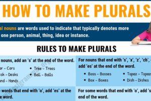 Regular & Irregular Plural Nouns: How to Make Plurals in English? 4