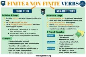 Finite-and-Non-Finite-Verbs-2-1.jpg