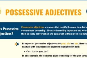 Possessive Adjectives: Definition, Usage with Useful Examples 14