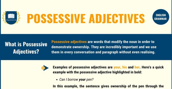 Possessive Adjectives: Definition, Usage with Useful Examples 2