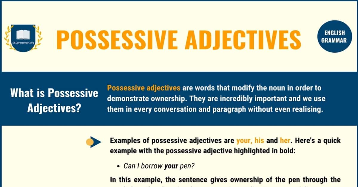 Possessive Adjectives: Definition, Usage with Useful Examples 1
